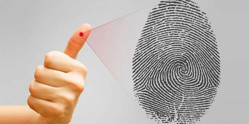 Kiểm tra vân tay theo sinh trắc học: Biết ngay mối tương quan giữa vân tay và tính cách, hành vi của bản thân