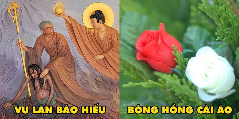 Lễ Vu Lan có nguồn gốc từ đâu và vì sao lại cài bông hồng trong ngày Báo hiếu?